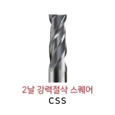 CSS2010-0250
